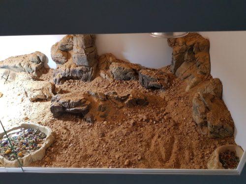 CeramicNature terrarium ledge