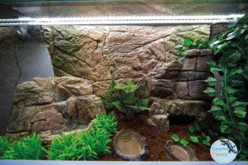 Terrarium background CeramicNature