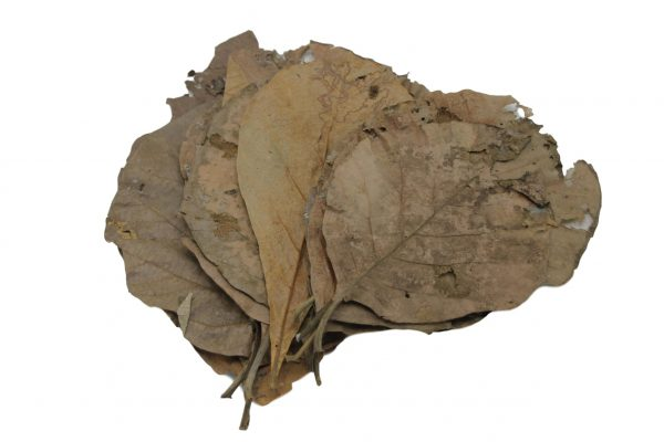 Teak leaves 45310 CeramicNature